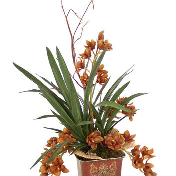 Brown Orchids in Square Porcelain Planter