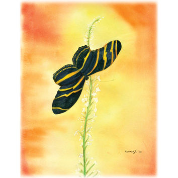 Black Butterfly – Print of an original watercolor painting