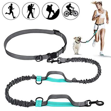 Great Hands Free Waist Dog Leash with Dual Bungees, Free Control for Up to 150 lbs Dogs, Durable Dual-Handle Bungee Leash with Adjustable Waist Belt - for Running, Jogging or Walking