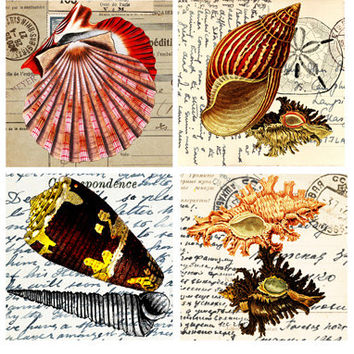 """vintage sea shell postcards clip art digital graphics image download collage sheet  printable 4"""" squares nautical beach coasters tiles cards"""