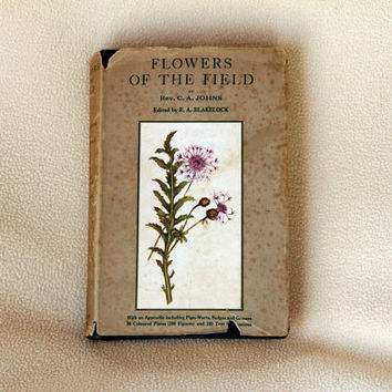 Flowers of the Field by Rev. C. A. Johns