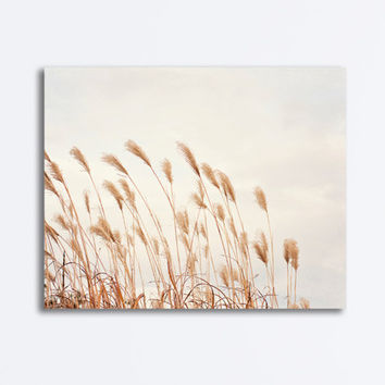 "Beach Grass Canvas, light beige cream brown beach grasses canvas gallery wrap neutral nature seashore photography country wall art, ""Unwind"""