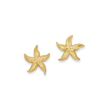15mm Satin Textured Starfish Post Earrings in 14k Yellow Gold