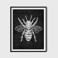 Bee Print, Wasp Poster, Insect decor,  Dictionary  Page, Book Print  ZA041