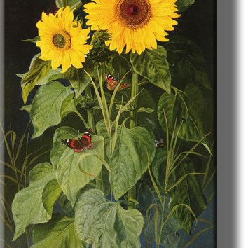 Sunflowers Picture by Fristrup on Acrylic , Wall Art Décor, Ready to Hang!