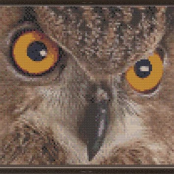 Piercing stare (owl closeup)  - pdf cross stitch pattern - brown yellow owl birds of prey bird woot  INSTANT DOWNLOAD