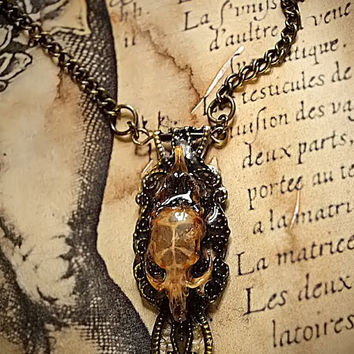 Real mouse skull cruelty free epoxy resin locket neck lace pendant charm metal furniture