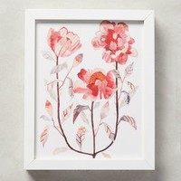 Michelle Morin Blooming Triad Wall Art in Rose Size: One Size Decor
