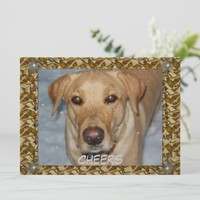 Cheers Golden Lab Bows Holiday Card
