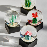 Free People Mini Cacti Snow Globe (Set of 4)