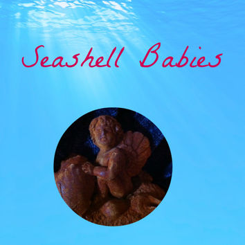 Seashell Babies (1): Deep under the sea live the most amazing creatures...