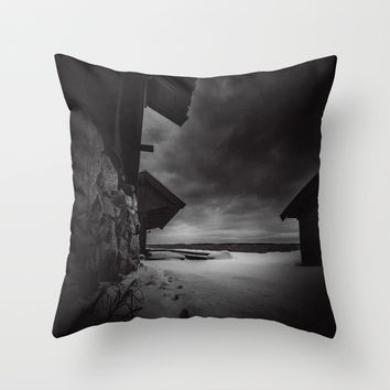 Frozen in time Throw Pillow by HappyMelvin