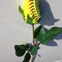 Longstem Fastpitch Softball Rose (from $13.95)