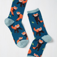 Bear-Cat Testimony Socks | Mod Retro Vintage Socks | ModCloth.com