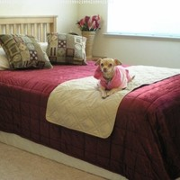 "Quilted Beige 20x72"" Bonded or Classic Micro Suede Pets Bed Pad Protector Runner for Twin Full Queen Bed"
