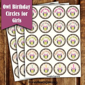 Owl Birthday Decoration - Kids Birthday Cake Toppers - Printable Owl Cupcake Toppers - 1st 2nd Birthday Cake Toppers - Babygirl 1st Birthday