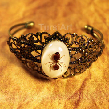 REAL Army Ant in resin brass filigree bracelet taxidermy Insect jewelry real bug in resin bangle bracelet real insect in resin real ant