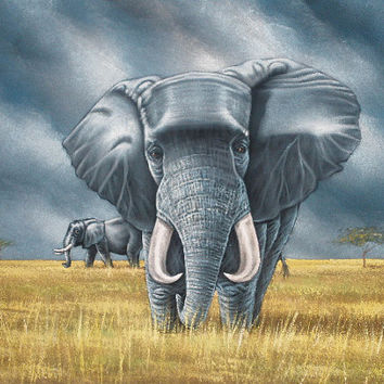 Gray elephant black velvet oil painting handpainted signed art