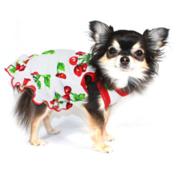 Hip Doggie Very Cherry Dress for Dogs - Clothing & Accessories - Dog - PetSmart