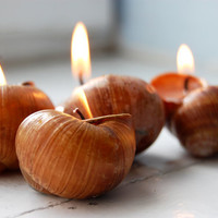 Snails Shell Candle Handmade Eco-friendly Reusable Candle - Choose Your Scent