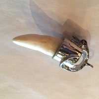 Alligator Tooth Key Ring