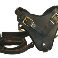"Dean & Tyler ""Boss"" Dog Harness and ""Soft Touch"" Leash Combo"