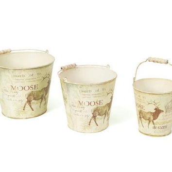 "6 Moose Buckets - Range From 6-8 "" H"