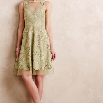 Embroidered Panna Dress