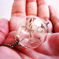 Real Dandelion Seed Large Glass Orb Necklace In Silver, Lucky You