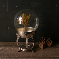 Glass Globe Nature Display With Silver Plated Stand by nowvintage