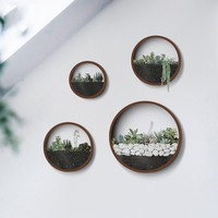 Round Wall Plant Planters Vase for Home Garden
