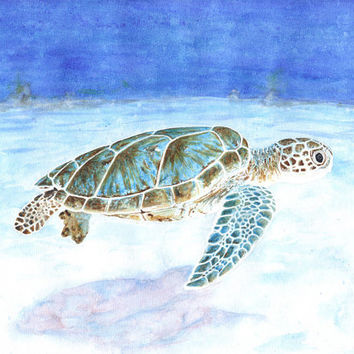 Original watercolor of a green turtle (unframed) - by Savousepate