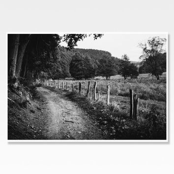 Rural Landscape Photograph | Black and White Print | Nature Photography | Countryside Road Photo Print | Dirt Path and Fence