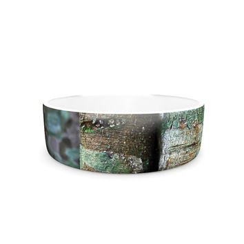 "Susan Sanders ""Into the Woods"" Brown Rustic Pet Bowl"