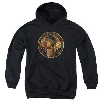 Fantastic Beasts - Magical Congress Crest Youth Pull Over Hoodie
