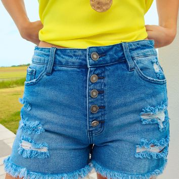 A Day In The Sun Shorts: Denim