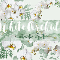 White orchid | instand download, orchid watercolor, wedding clip art, floral design, watercolor flowers, floral clipart watercolor clipart