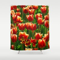 Red Tulips Shower Curtain by Claude Gariepy