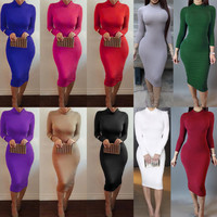 Turtle Neck Pencil Bodycon Long Sleeve Dress