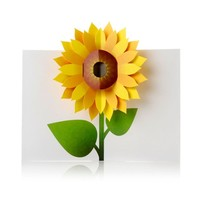 Sunflower Pop Up Note Cards