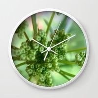 Seedlings Wall Clock by UMe Images