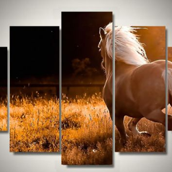 Sunlit Palomino 5-Piece Wall Art Canvas