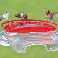 Hummingbird Feeders-Window Bird Feeders - Jewel Box Hummingbird Feeder