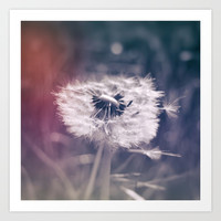street photo DANDELION #street #streetphoto Art Print by jbjart