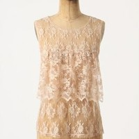 Highbury Top - Anthropologie.com
