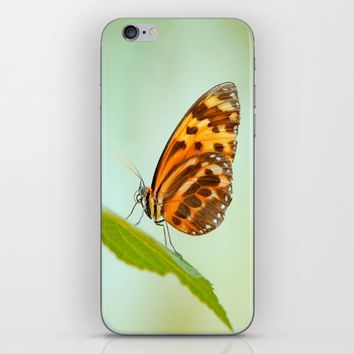 Butterfly Love iPhone & iPod Skin by Tanja Riedel