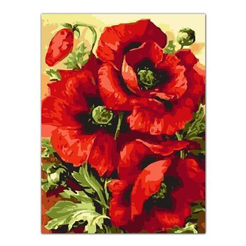 Frameless Poppy Flower DIY Frameless Pictures Painting By Numbers DIY Digital Canvas Oil Painting Living RoomHome Office Decor