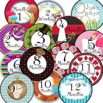 14 Alice in Wonderland Inspired Baby Girl Monthly Milestone Onesuit Stickers Newborn Shower Gift