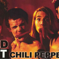 Red Hot Chili Peppers Portrait Poster 24x35