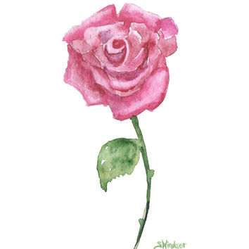 Pink Rose Watercolor 5x7